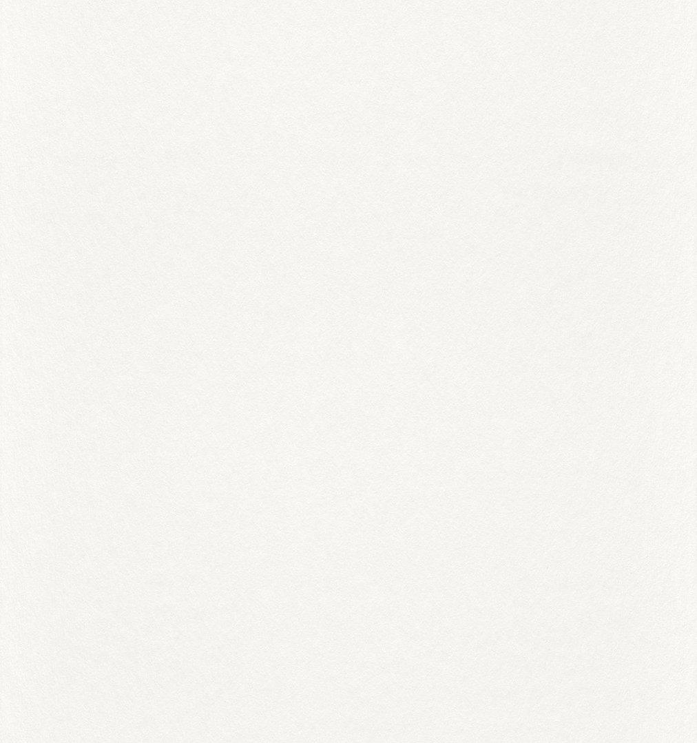 rasch 165814 profivlies malerfreund. Black Bedroom Furniture Sets. Home Design Ideas